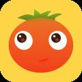 小番茄交友