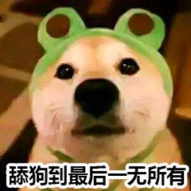 王思聪舔狗语录app