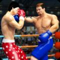 拳击明星冠军游戏安卓版