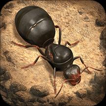 小小蚁国手游  v1.0.15
