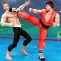 出色的跆拳道格斗
