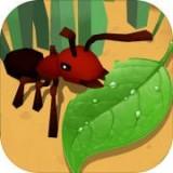 蚂蚁进化3d无敌版