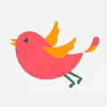 飞鸟资讯官方版