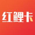 紅鯉商家app