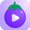 茄子app