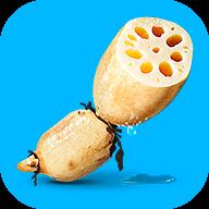 莲藕短视频app